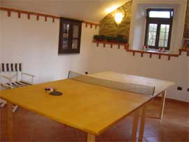 Casarina Ping Pong table